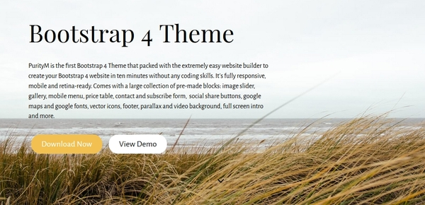 bootstrap-4-theme