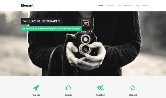 Elegant - Best Free WordPress Themes 2016