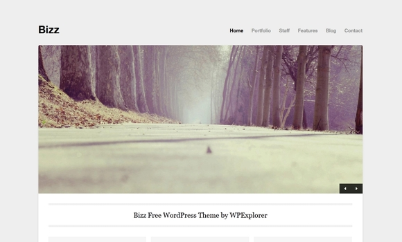 Bizz - Best wordpress websites 2016